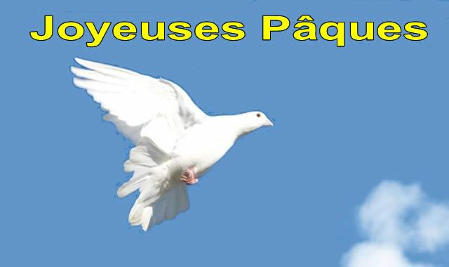 Image Colombe Pâques
