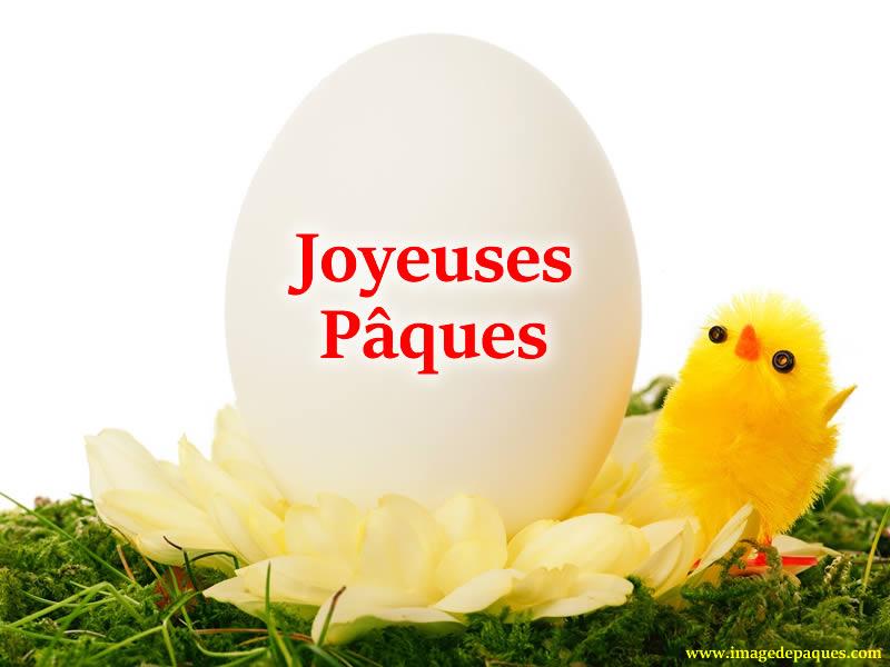 Images Gratuites de Pâques pour Whatsapp