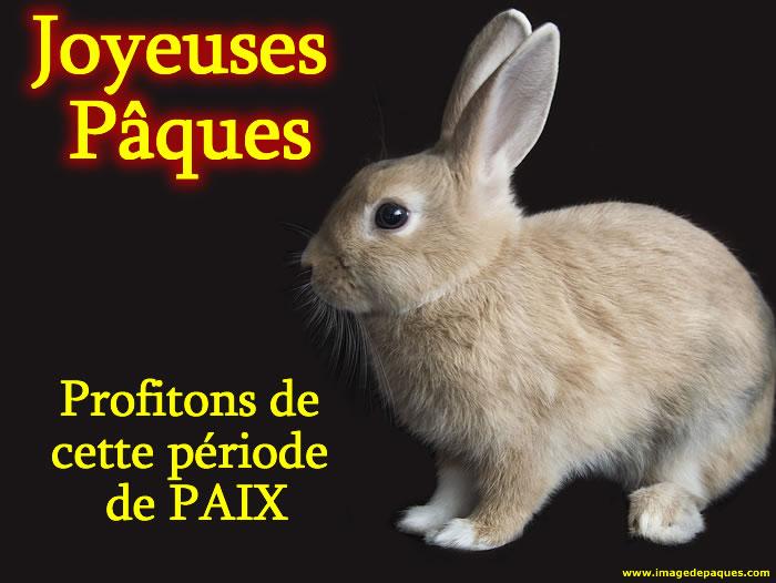 Images gratuites Lapin de Pâques