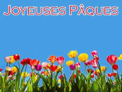 Image Fleurs de Pâques