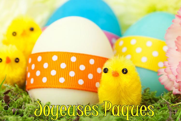 Image de Poussin de Pâques