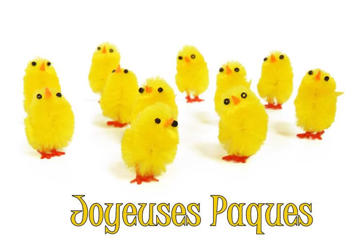 Poussin de Pâques